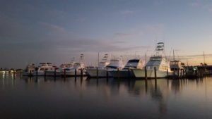 Sportfish Boats at Key Allegro Marina